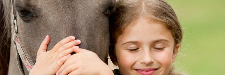 Aansprakelijkheid na een paardrijongeval