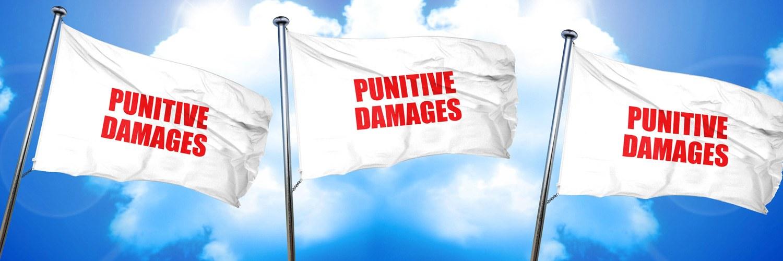 Is de tijd rijp voor punitive damages