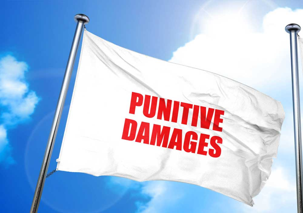 Is de tijd rijp voor punitive damages